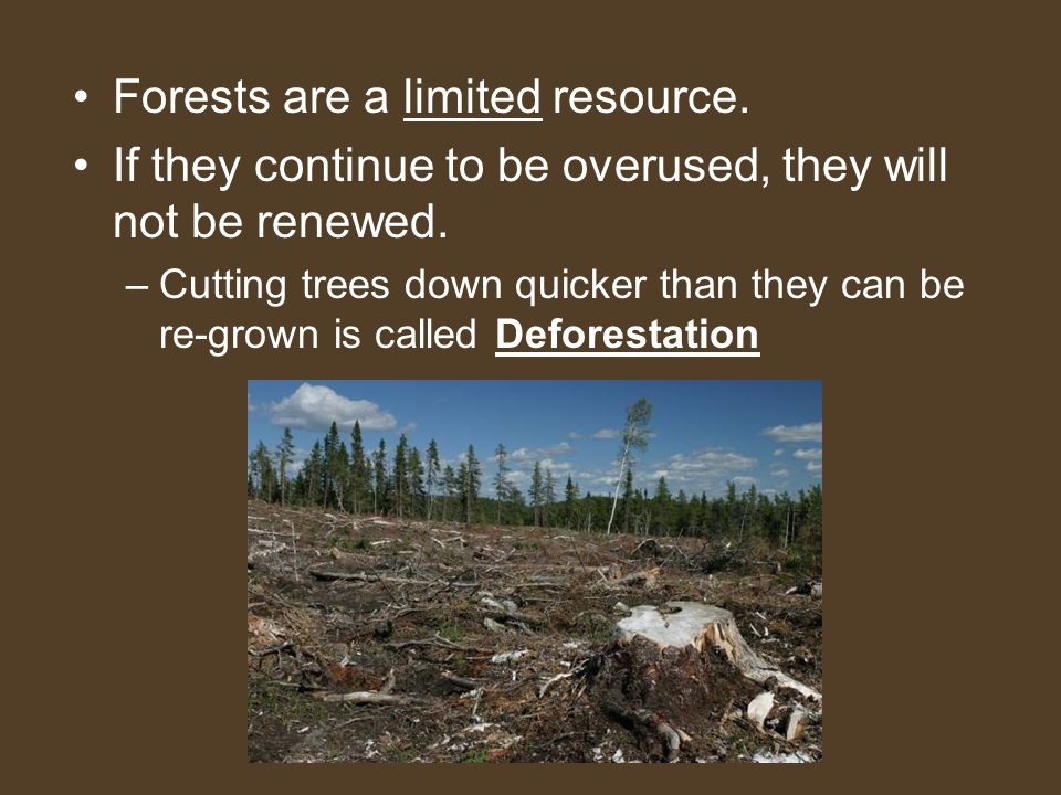 Forests are a limited resource. If they continue to be overused, they will not be renewed. –Cutting trees down quicker than they can be re-grown is ca