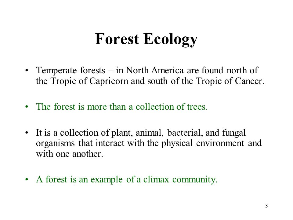 3 Forest Ecology Temperate forests – in North America are found north of the Tropic of Capricorn and south of the Tropic of Cancer.