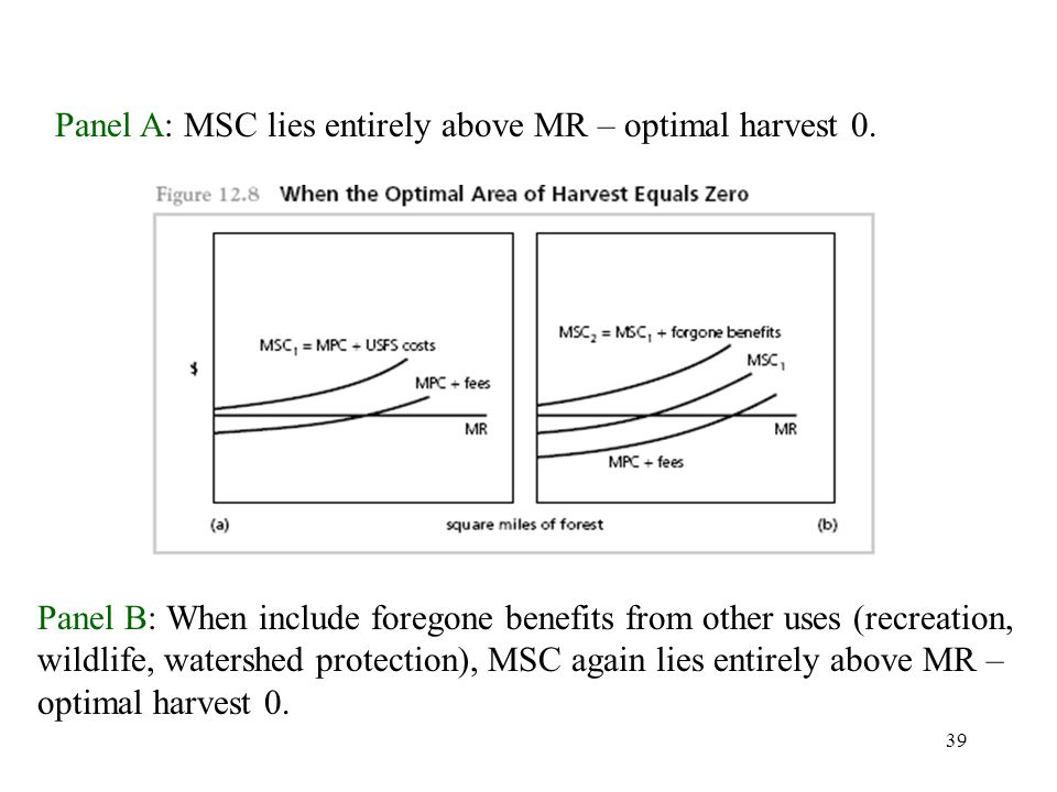 39 Panel A: MSC lies entirely above MR – optimal harvest 0.
