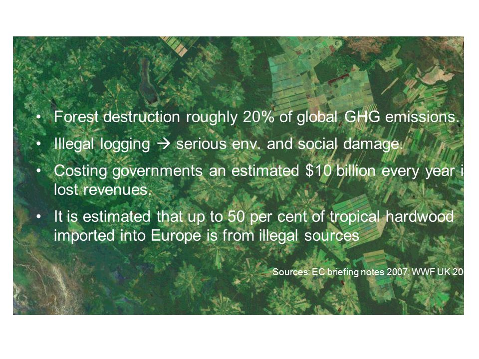 Forest destruction roughly 20% of global GHG emissions.