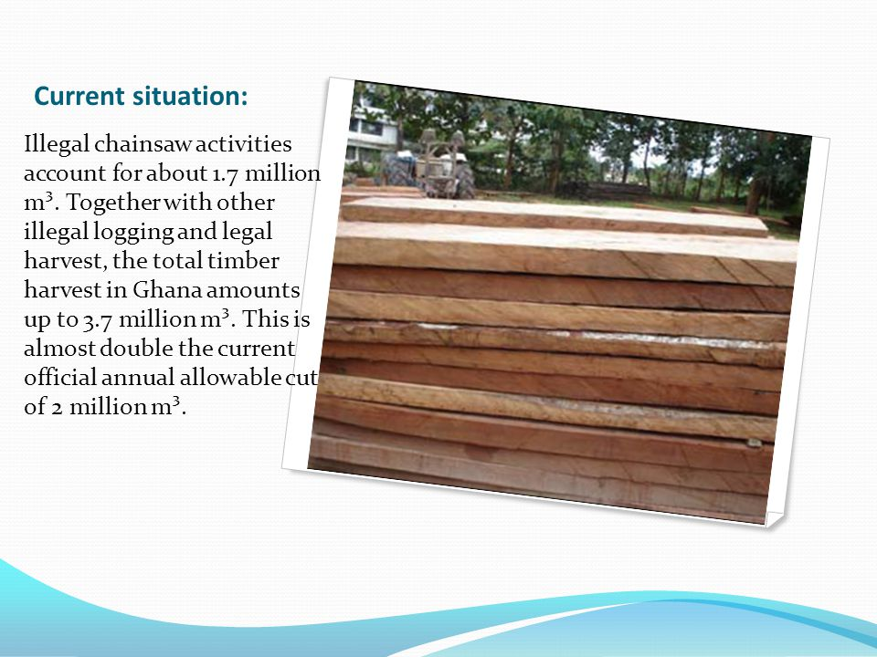 Illegal chainsaw activities account for about 1.7 million m³.
