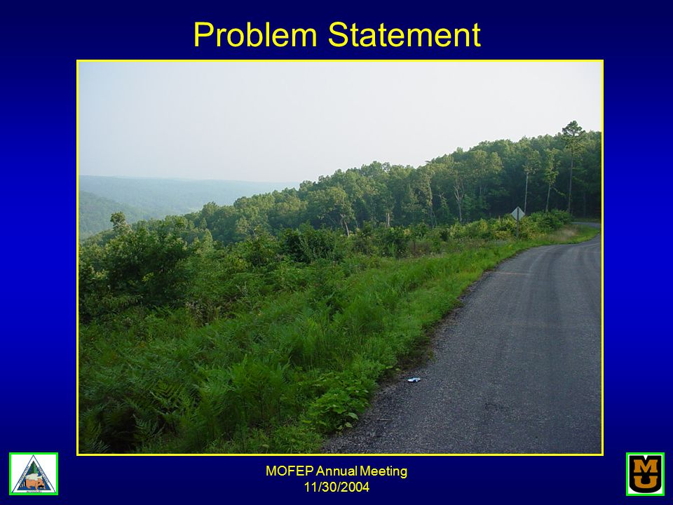MOFEP Annual Meeting 11/30/2004 Problem Statement