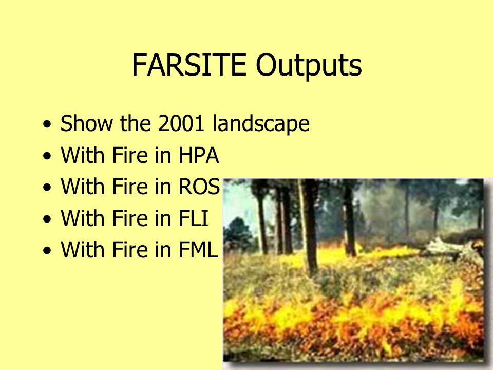 FARSITE Outputs Show the 2001 landscape With Fire in HPA With Fire in ROS With Fire in FLI With Fire in FML