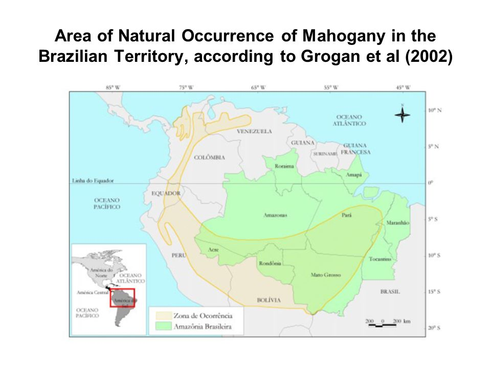 Area of Natural Occurrence of Mahogany in the Brazilian Territory, according to Grogan et al (2002)