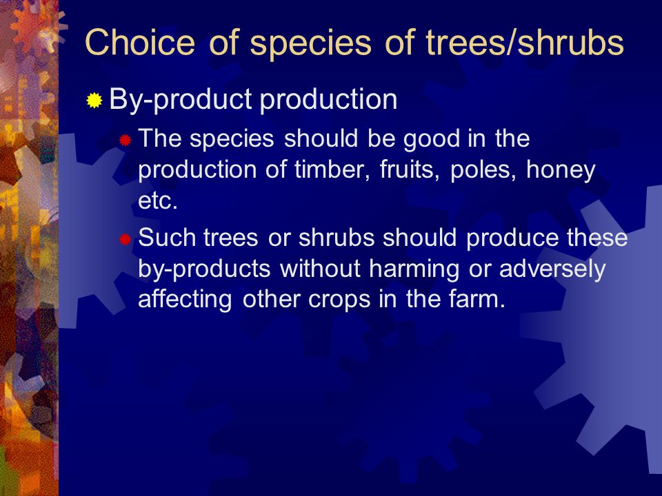 Choice of species of trees/shrubs  By-product production  The species should be good in the production of timber, fruits, poles, honey etc.