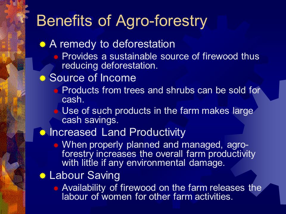 Benefits of Agro-forestry  A remedy to deforestation  Provides a sustainable source of firewood thus reducing deforestation.