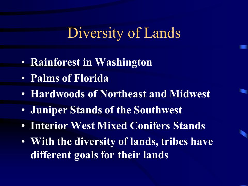Diversity of Lands Rainforest in Washington Palms of Florida Hardwoods of Northeast and Midwest Juniper Stands of the Southwest Interior West Mixed Conifers Stands With the diversity of lands, tribes have different goals for their lands