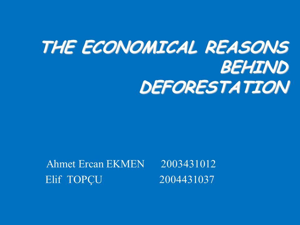 THE ECONOMICAL REASONS BEHIND DEFORESTATION Ahmet Ercan EKMEN 2003431012 Elif TOPÇU 2004431037