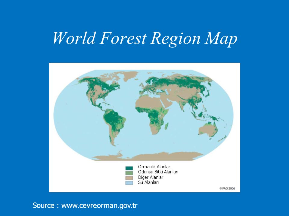 The paper aims to… Emphasize deforestation as a global environmental problem.