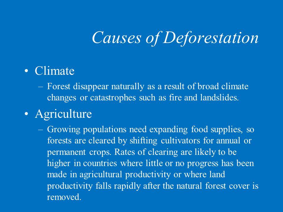 Causes of Deforestation Logging –Commercial logging operations deplete forest stocks.