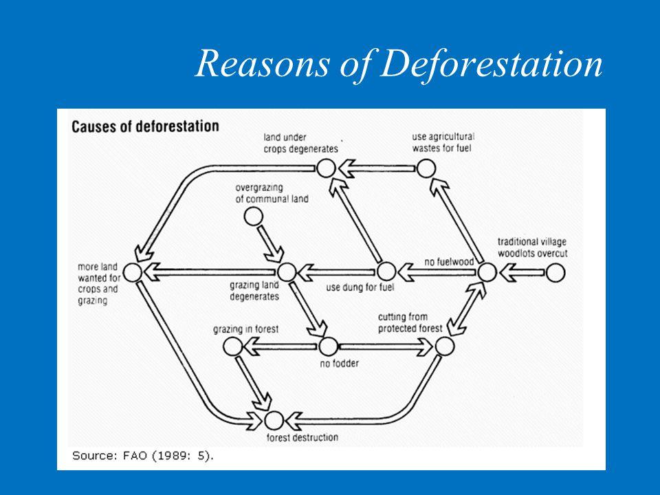 Reasons of Deforestation