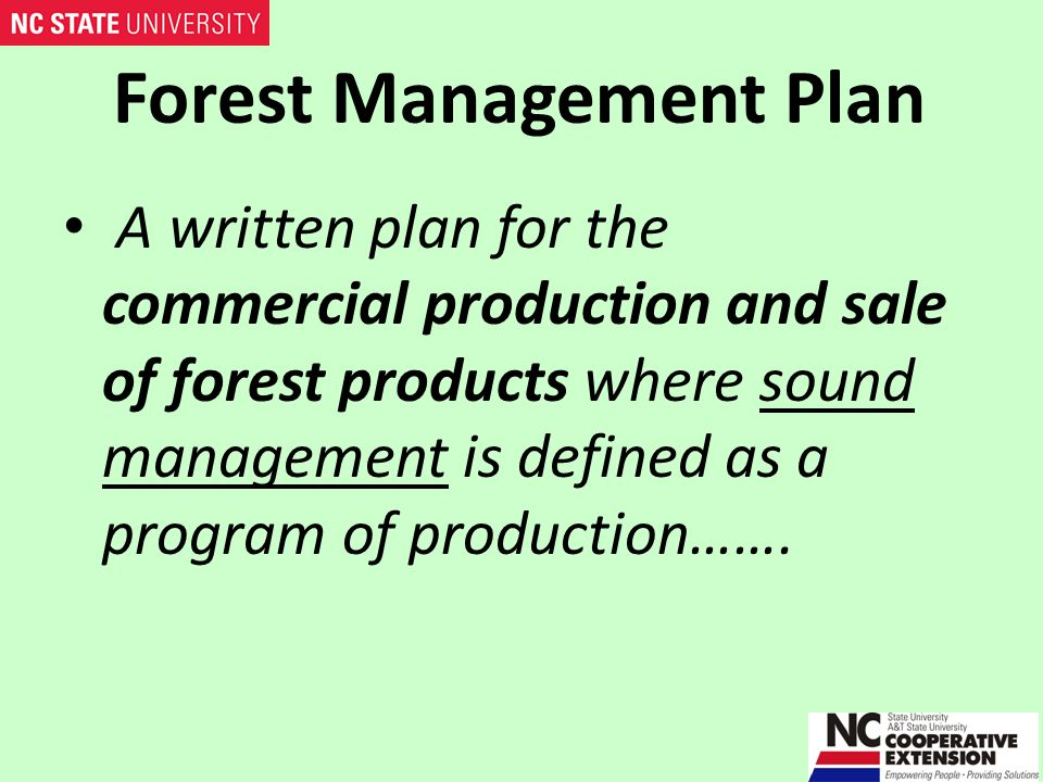 Forest Management Plan …….