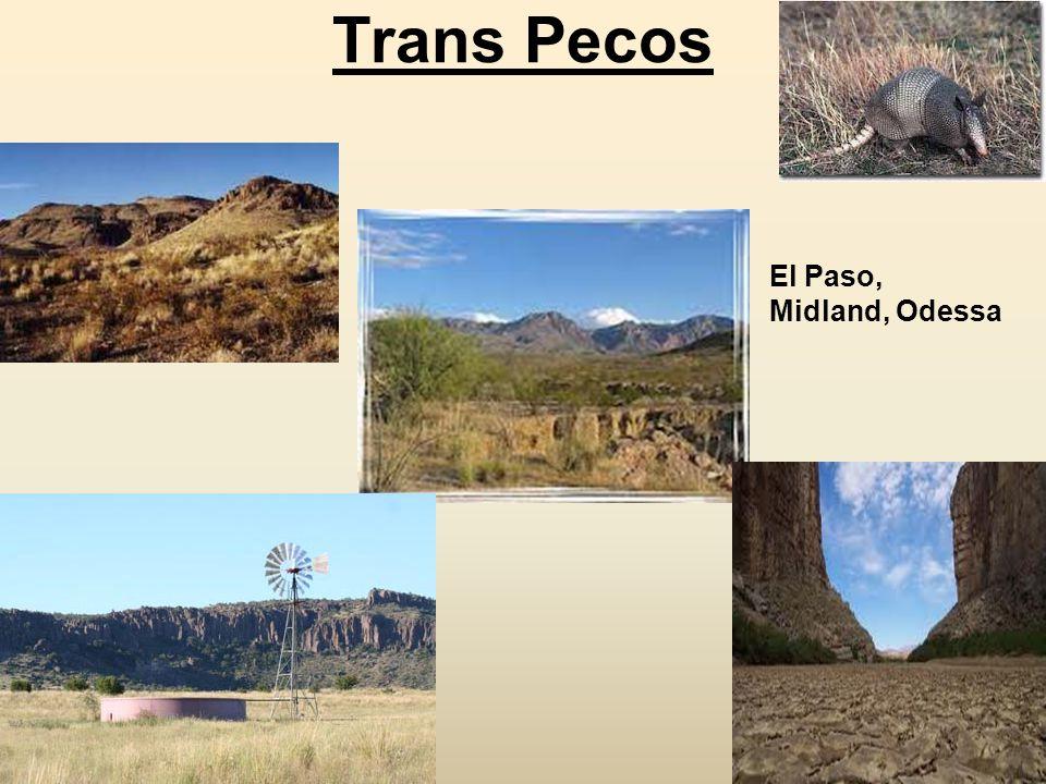 Trans Pecos El Paso, Midland, Odessa