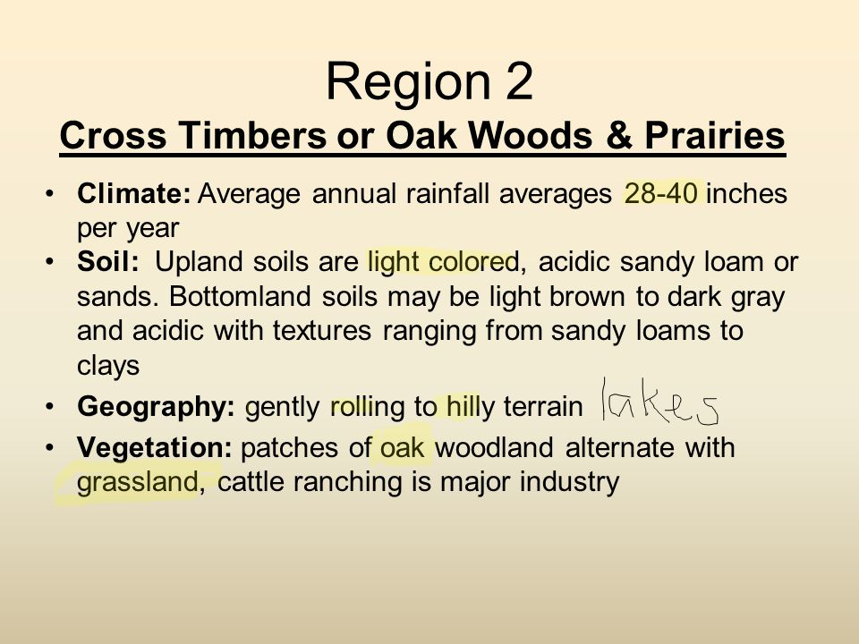 Region 2 Cross Timbers or Oak Woods & Prairies Climate: Average annual rainfall averages 28-40 inches per year Soil: Upland soils are light colored, a