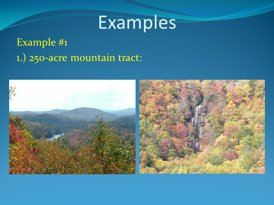 Examples Example #1 1.) 250-acre mountain tract: