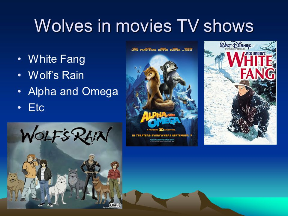 Wolves in movies TV shows White Fang Wolf's Rain Alpha and Omega Etc