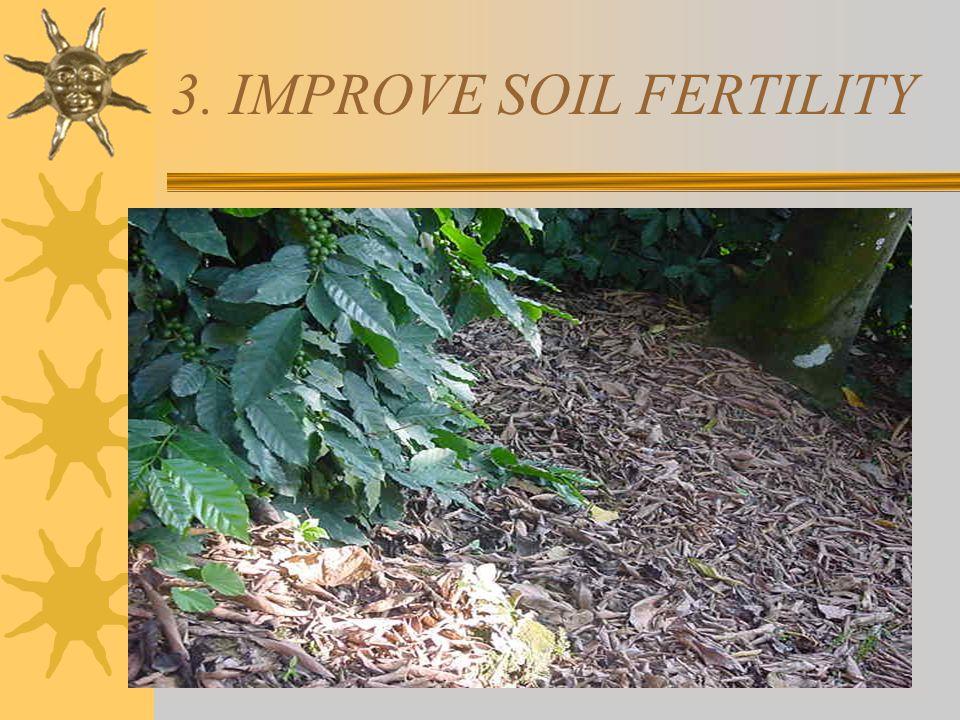 2. REDUCE SOIL EROSION