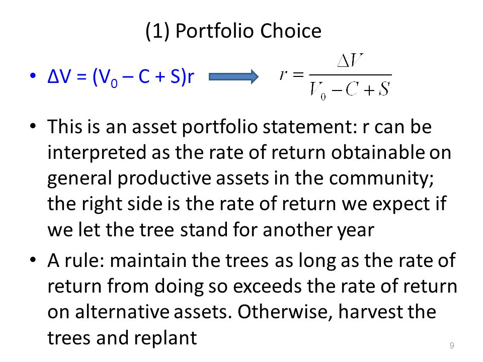 (1) Portfolio Choice ΔV = (V 0 – C + S)r This is an asset portfolio statement: r can be interpreted as the rate of return obtainable on general produc
