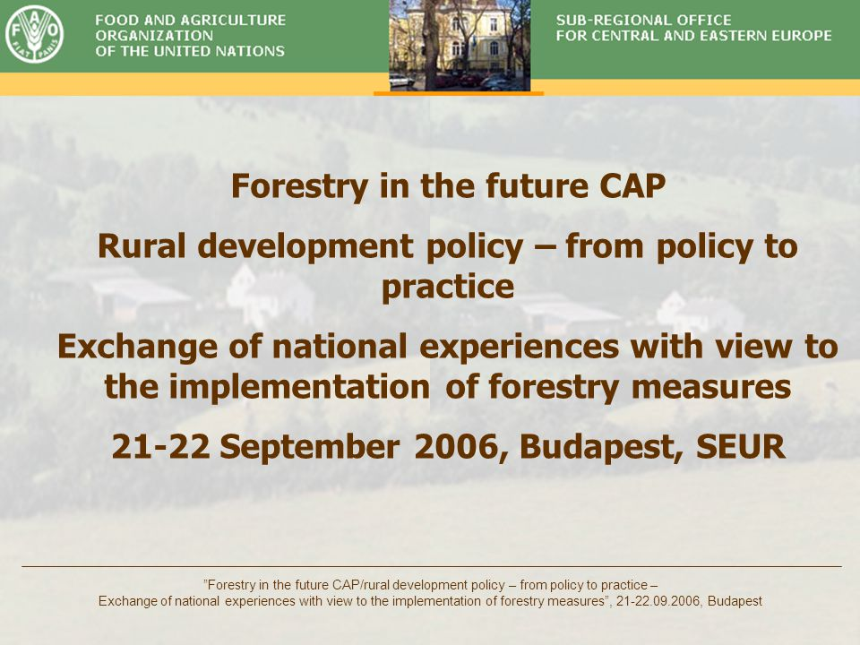Timber Committee Forestry in the future CAP/rural development policy – from policy to practice – Exchange of national experiences with view to the implementation of forestry measures , 21-22.09.2006, Budapest Policy scenarios Business as usual (++) a.Market driven restructuring of rural areas and activities b.Continuing migration and pressure on urban areas c.But low environmental impacts: natural regeneration of forests, which is ongoing in many Eastern European countries on abandoned agriculture land Focus on social and environmental impacts (+++) –But input is limited: see item c.