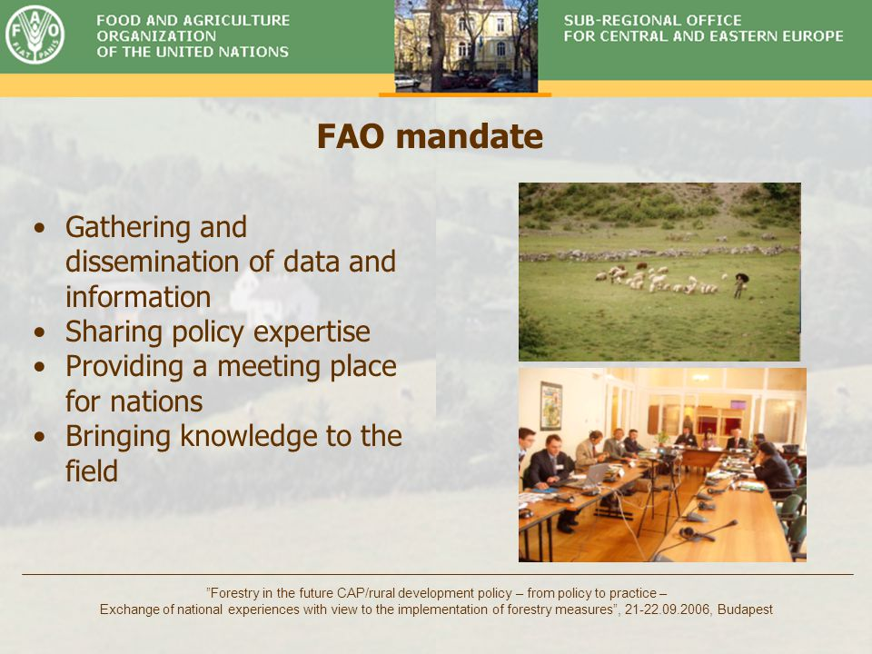 Timber Committee Forestry in the future CAP/rural development policy – from policy to practice – Exchange of national experiences with view to the implementation of forestry measures , 21-22.09.2006, Budapest Priorities of 24th FAO Regional Conference for Europe Monitoring of implementation of the goals of the World Food Summit Prioritization of rural development and food security issues in national development strategies Food security, land rights, land markets Conservation of plant genetic resources and encouragement for benefit sharing