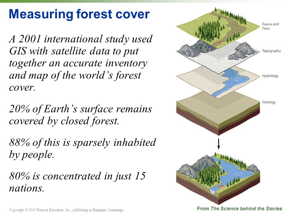 Copyright © 2005 Pearson Education, Inc., publishing as Benjamin Cummings Measuring forest cover A 2001 international study used GIS with satellite data to put together an accurate inventory and map of the world's forest cover.