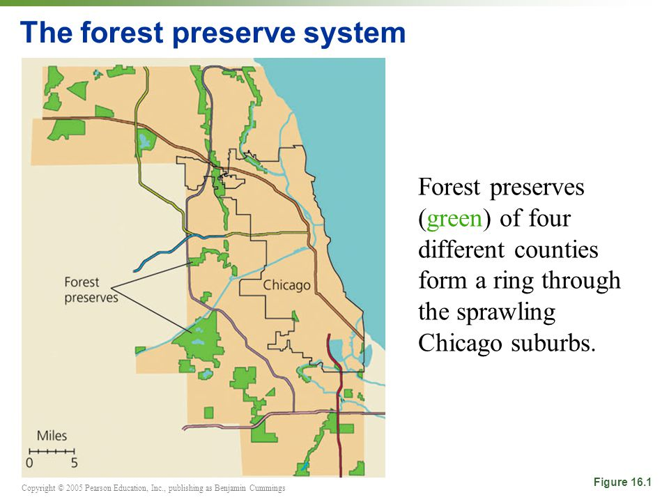 Copyright © 2005 Pearson Education, Inc., publishing as Benjamin Cummings The forest preserve system Forest preserves (green) of four different counties form a ring through the sprawling Chicago suburbs.