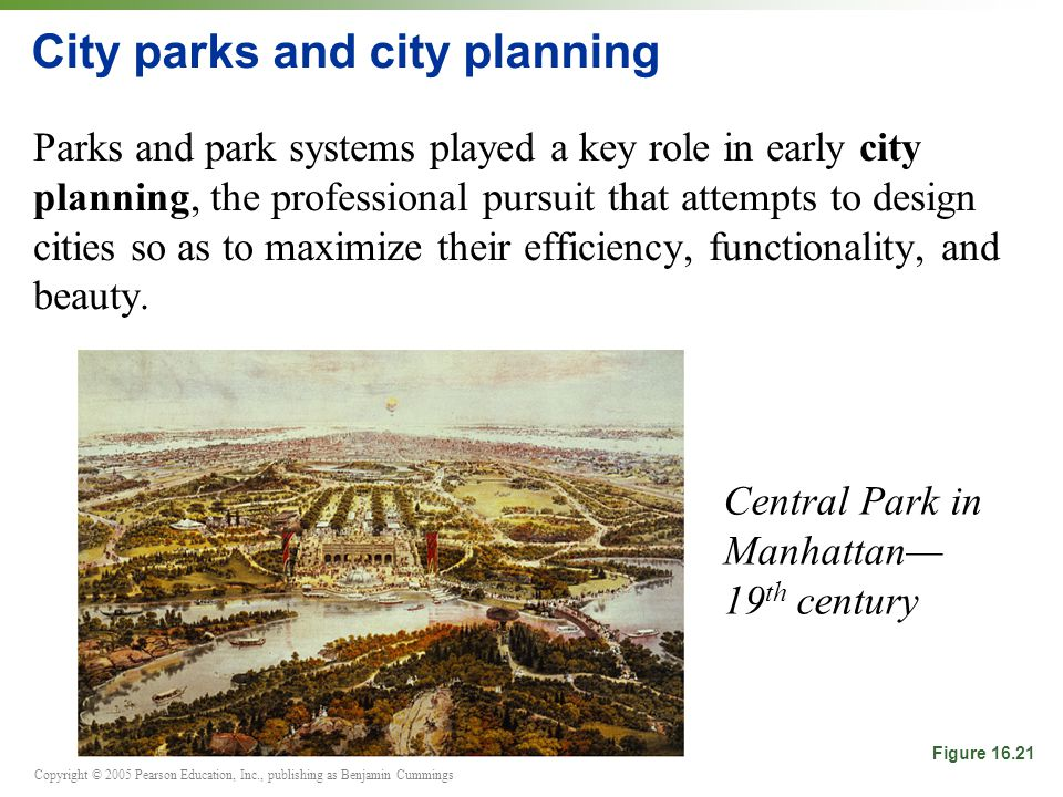Copyright © 2005 Pearson Education, Inc., publishing as Benjamin Cummings City parks and city planning Parks and park systems played a key role in early city planning, the professional pursuit that attempts to design cities so as to maximize their efficiency, functionality, and beauty.