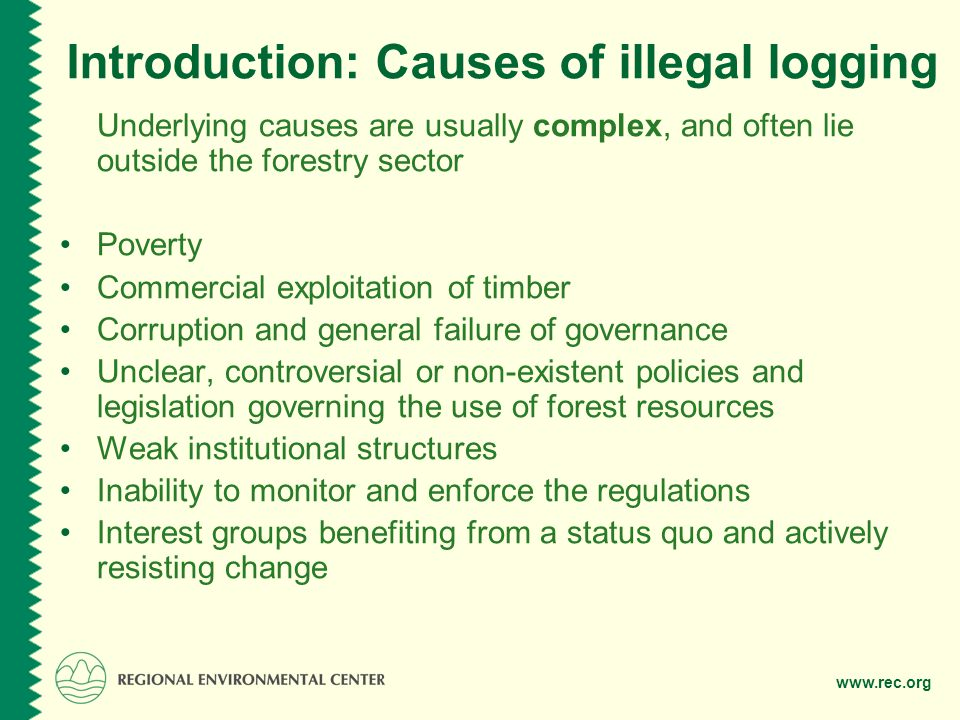 www.rec.org Consequences of illegal logging Environmental implications: loss of biodiversity, deforestation/forest degradation, desertification, climate change Economic and social consequences: revenue loss for the government, corruption, undermining the rule of law and good governance, contributing to organised crime, weakening the fabric of society Cross-border impacts: tensions, hindering regional sustainable development