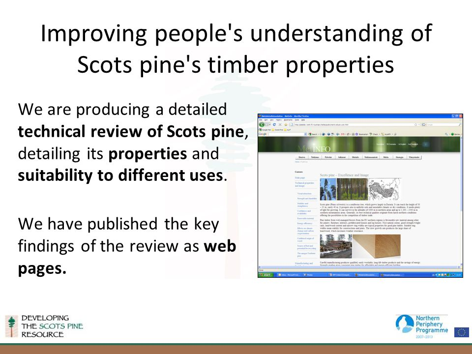 Improving people s understanding of Scots pine s timber properties We are producing a detailed technical review of Scots pine, detailing its properties and suitability to different uses.