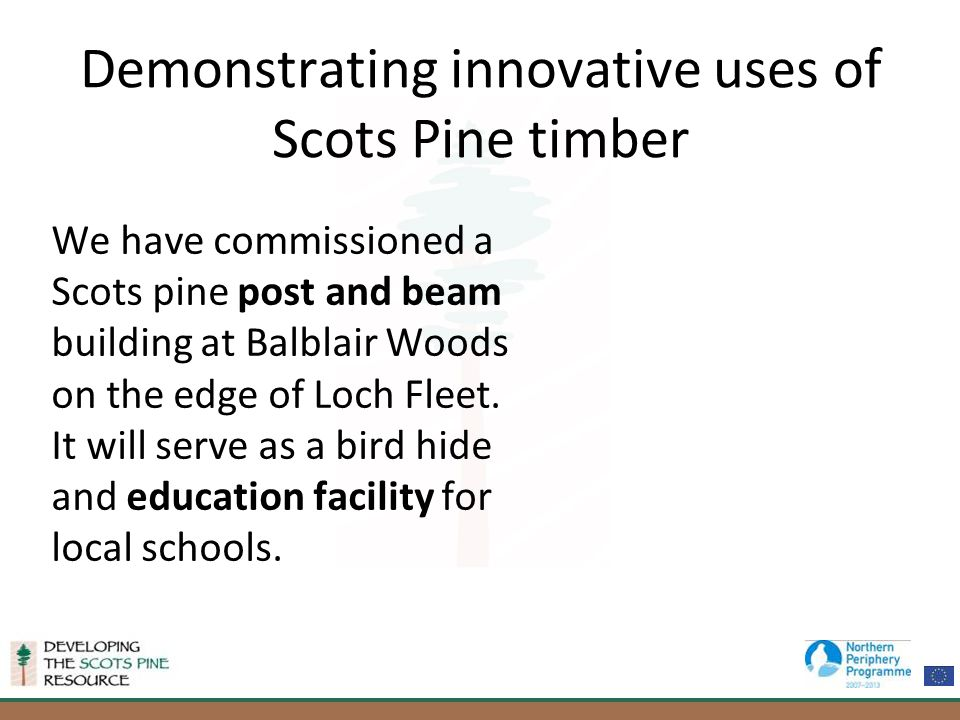Demonstrating innovative uses of Scots Pine timber We have commissioned a Scots pine post and beam building at Balblair Woods on the edge of Loch Fleet.