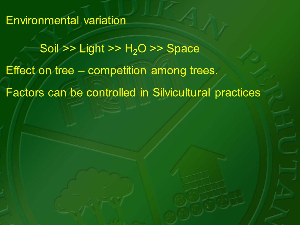 Environmental variation Soil >> Light >> H 2 O >> Space Effect on tree – competition among trees.
