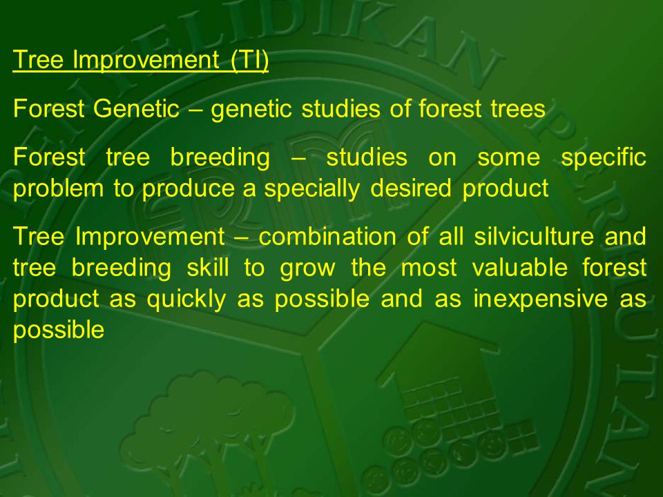 Tree Improvement (TI) Forest Genetic – genetic studies of forest trees Forest tree breeding – studies on some specific problem to produce a specially desired product Tree Improvement – combination of all silviculture and tree breeding skill to grow the most valuable forest product as quickly as possible and as inexpensive as possible