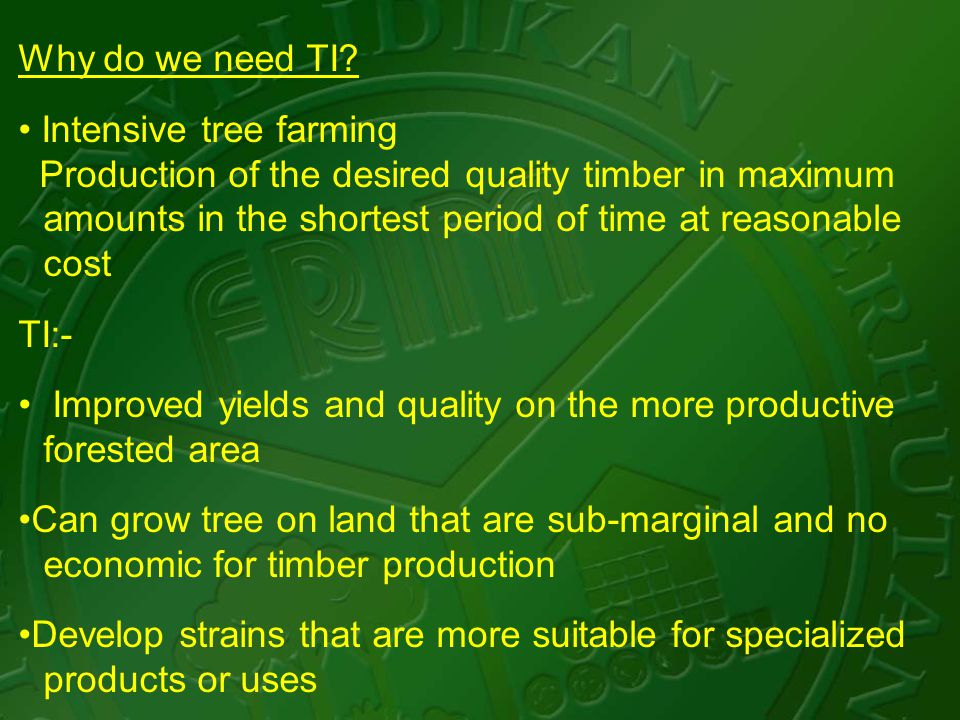Why do we need TI? Intensive tree farming Production of the desired quality timber in maximum amounts in the shortest period of time at reasonable cos