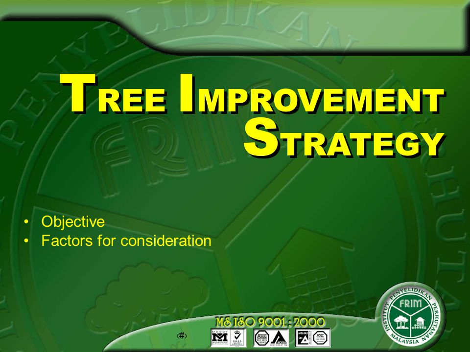 50 T REE I MPROVEMENT S TRATEGY Objective Factors for consideration