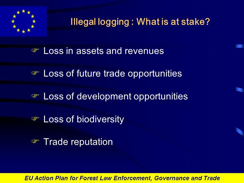 EU Action Plan for Forest Law Enforcement, Governance and Trade Thank you Flip.VAN-HELDEN@ec.europa.eu