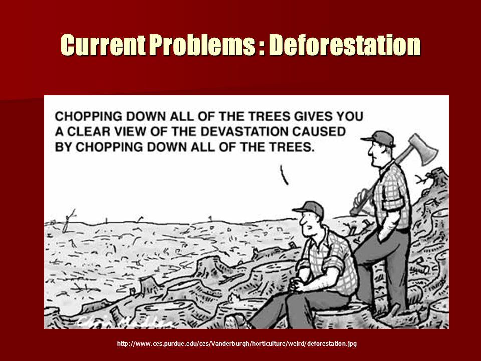 Current Problems : Deforestation http://www.ces.purdue.edu/ces/Vanderburgh/horticulture/weird/deforestation.jpg