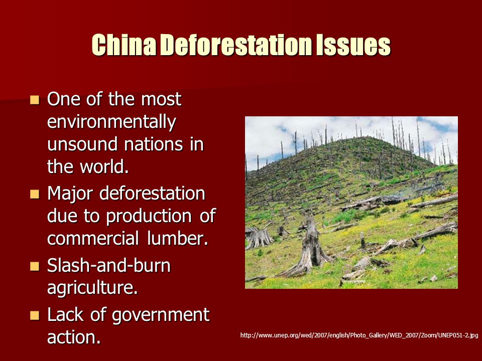 China Deforestation Issues One of the most environmentally unsound nations in the world. One of the most environmentally unsound nations in the world.