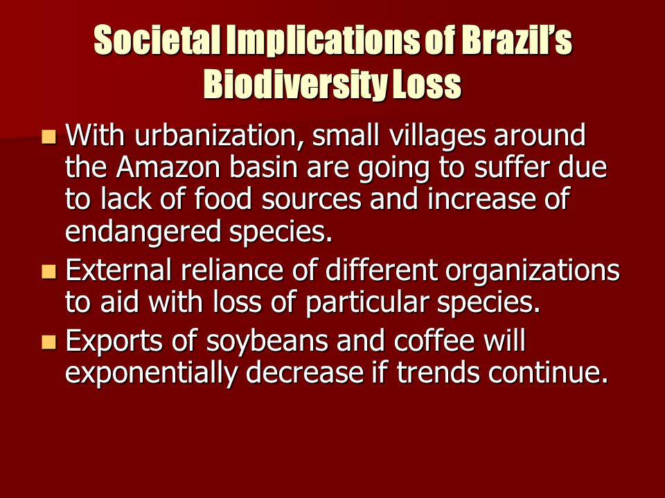 Societal Implications of Brazil's Biodiversity Loss With urbanization, small villages around the Amazon basin are going to suffer due to lack of food
