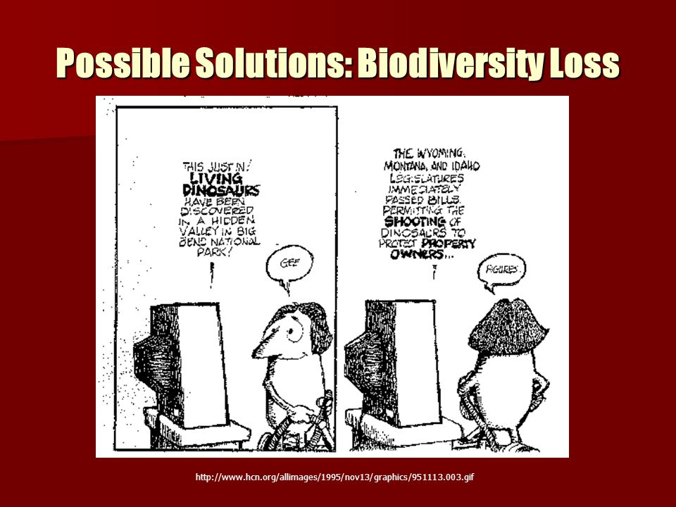 Possible Solutions: Biodiversity Loss http://www.hcn.org/allimages/1995/nov13/graphics/951113.003.gif