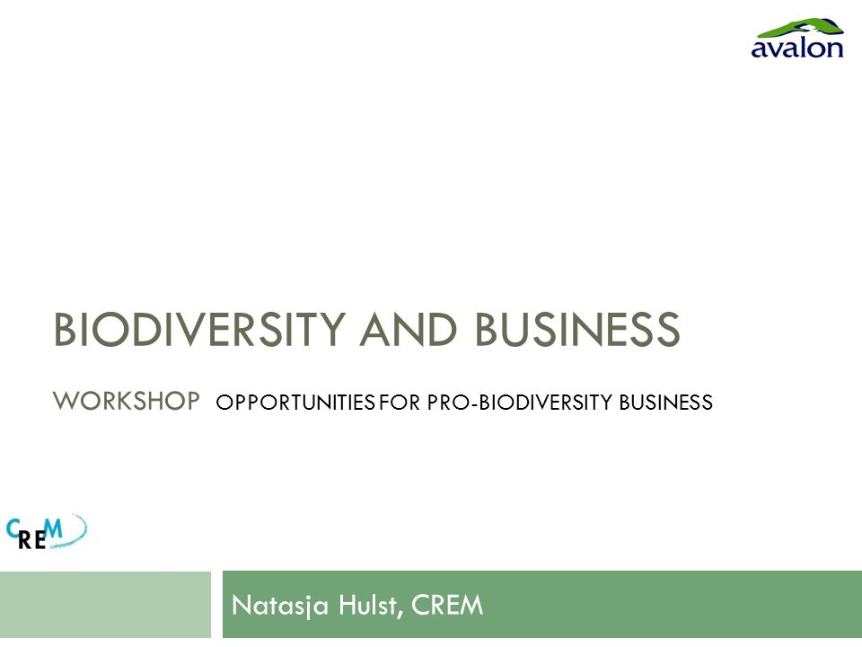 BIODIVERSITY AND BUSINESS WORKSHOP OPPORTUNITIES FOR PRO-BIODIVERSITY BUSINESS Natasja Hulst, CREM