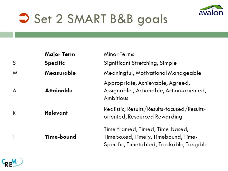  Set 2 SMART B&B goals Major TermMinor Terms SSpecificSignificant Stretching, Simple MMeasurableMeaningful, Motivational Manageable AAttainable Appropriate, Achievable, Agreed, Assignable, Actionable, Action-oriented, Ambitious RRelevant Realistic, Results/Results-focused/Results- oriented, Resourced Rewarding TTime-bound Time framed, Timed, Time-based, Timeboxed, Timely, Timebound, Time- Specific, Timetabled, Trackable, Tangible