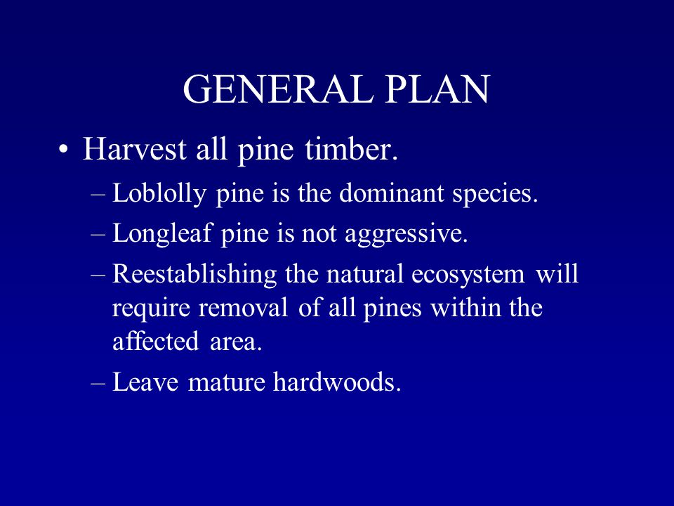 GENERAL PLAN Harvest all pine timber. –Loblolly pine is the dominant species.