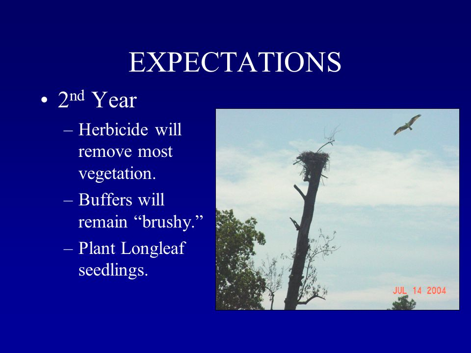 EXPECTATIONS 2 nd Year –Herbicide will remove most vegetation.