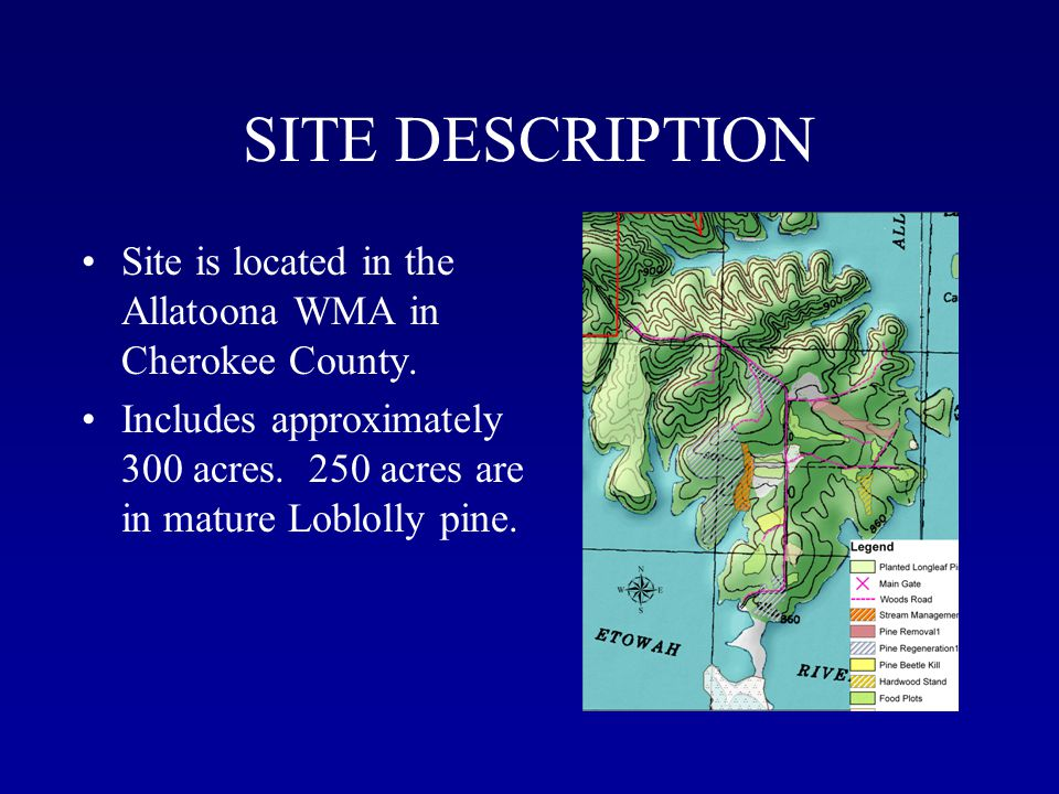 SITE DESCRIPTION Site is located in the Allatoona WMA in Cherokee County.