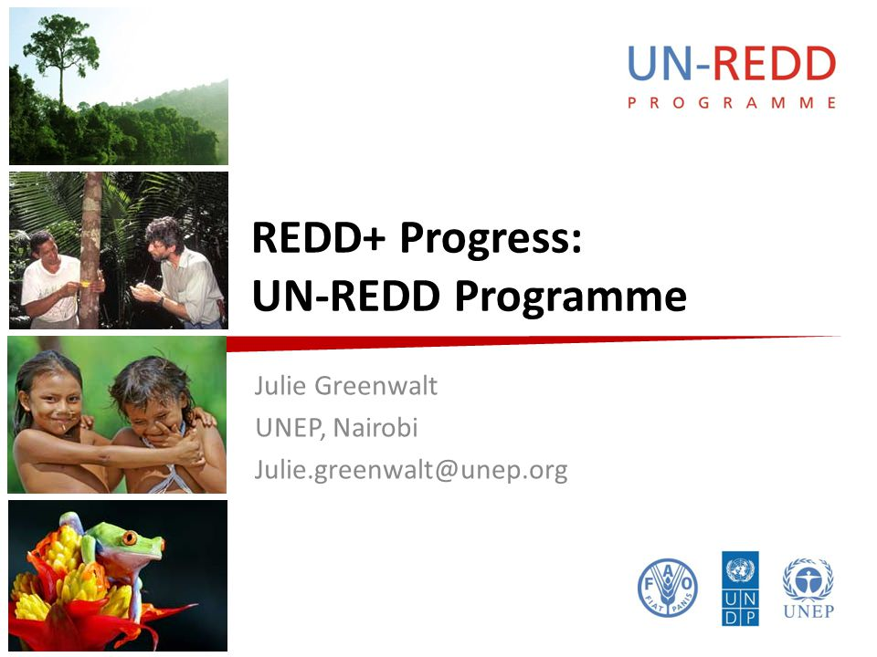 UN-REDD P R O G R A M M E UN-REDD Programme  Supports countries to benefit from REDD+ – National REDD+ Strategies and Readiness, capacity building  Established in 2008 by FAO, UNDP & UNEP – Response to UNFCCC Bali Action Plan  Offers UN Joint Programme: Delivering as One UN  Agreed delivery platform with FCPF and FIP  Builds on wider UN agency roles – E.g.