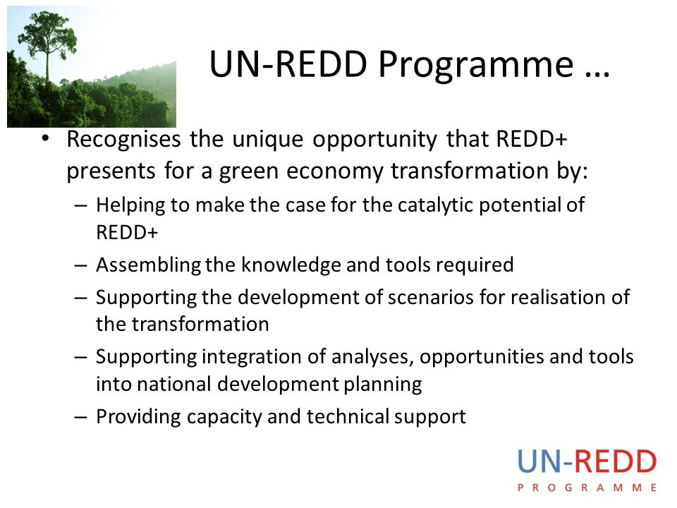 UN-REDD P R O G R A M M E UN-REDD Programme … Recognises the unique opportunity that REDD+ presents for a green economy transformation by: – Helping t