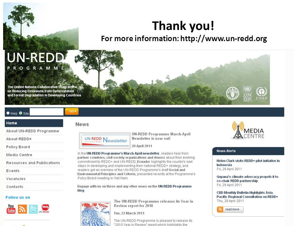 UN-REDD P R O G R A M M E Thank you! For more information: http://www.un-redd.org