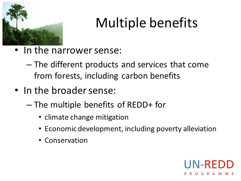 UN-REDD P R O G R A M M E Multiple benefits In the narrower sense: – The different products and services that come from forests, including carbon bene