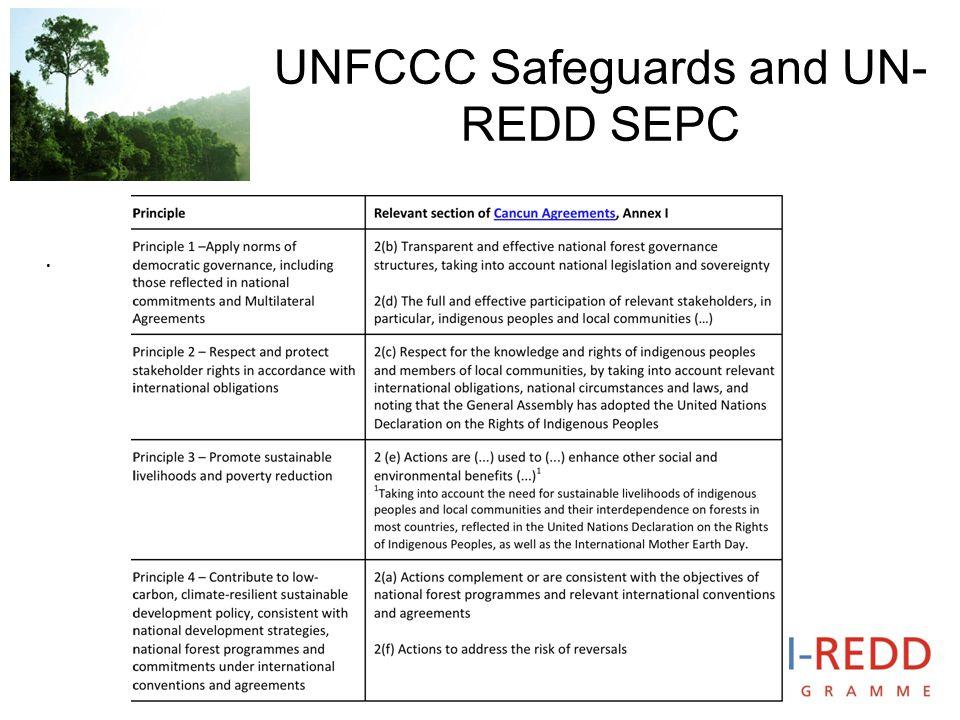 UNFCCC Safeguards and UN- REDD SEPC.