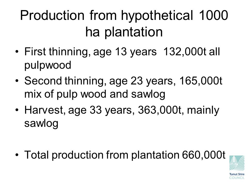 Production from hypothetical 1000 ha plantation First thinning, age 13 years 132,000t all pulpwood Second thinning, age 23 years, 165,000t mix of pulp